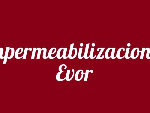 Impermeabilizaciones Evor