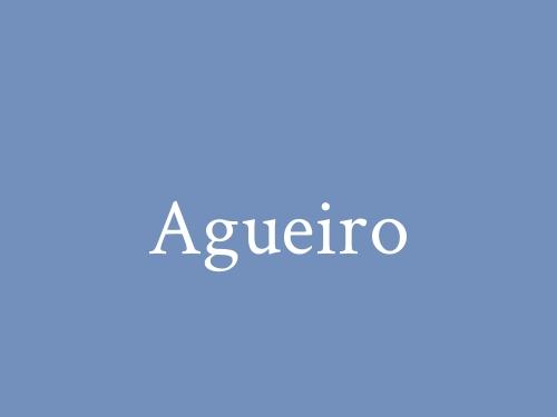 Agueiro