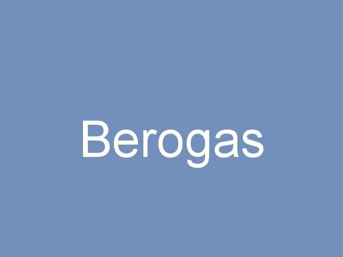 Berogas