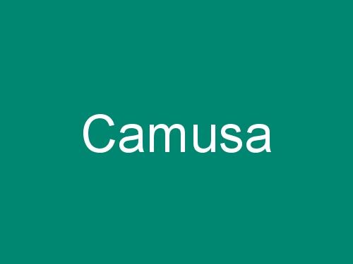Camusa