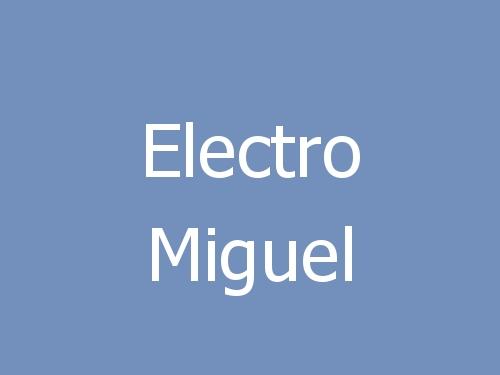 Electro Miguel