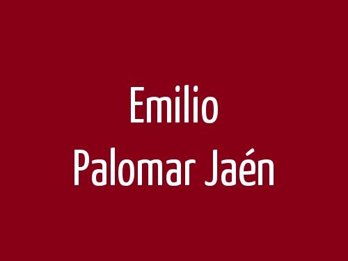Emilio Palomar Jaén