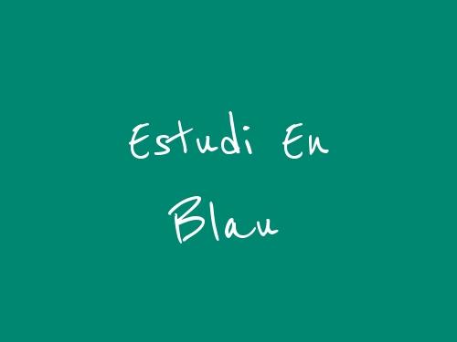 Estudi en Blau - Reus