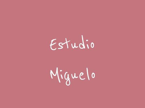 Estudio Miguelo
