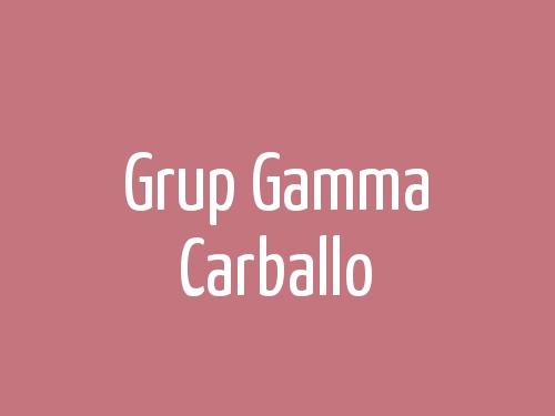 Grup Gamma  Carballo