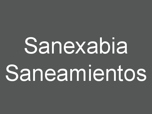 Sanexabia Saneamientos