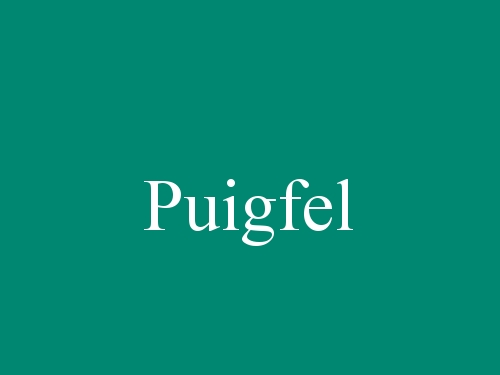 Puigfel