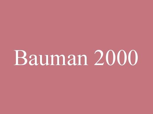Bauman 2000