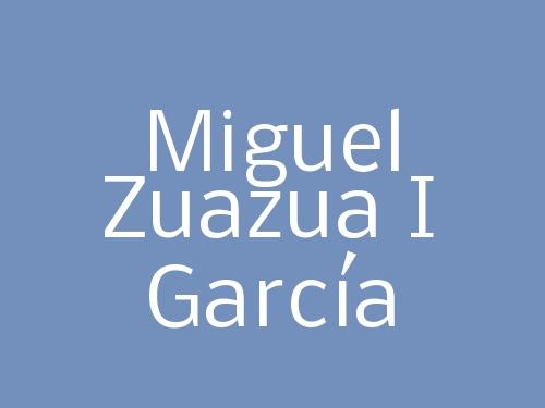 Miguel Zuazua I García