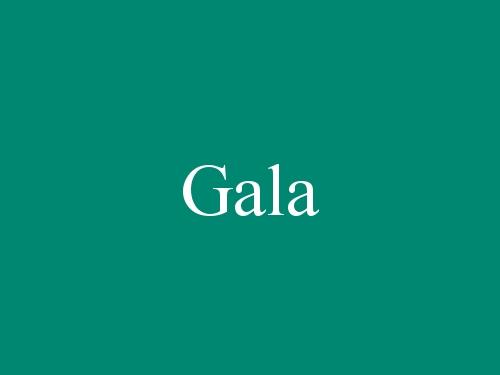 Gala - Burgos