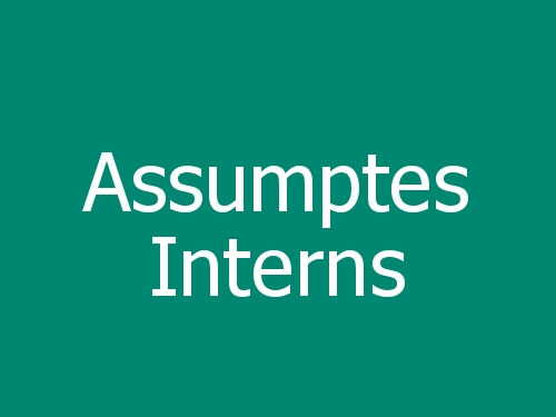 Assumptes Interns