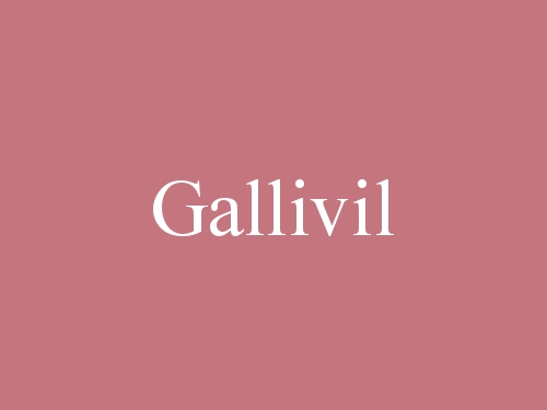 Gallivil