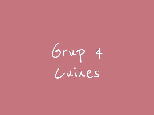 Grup 4 Cuines