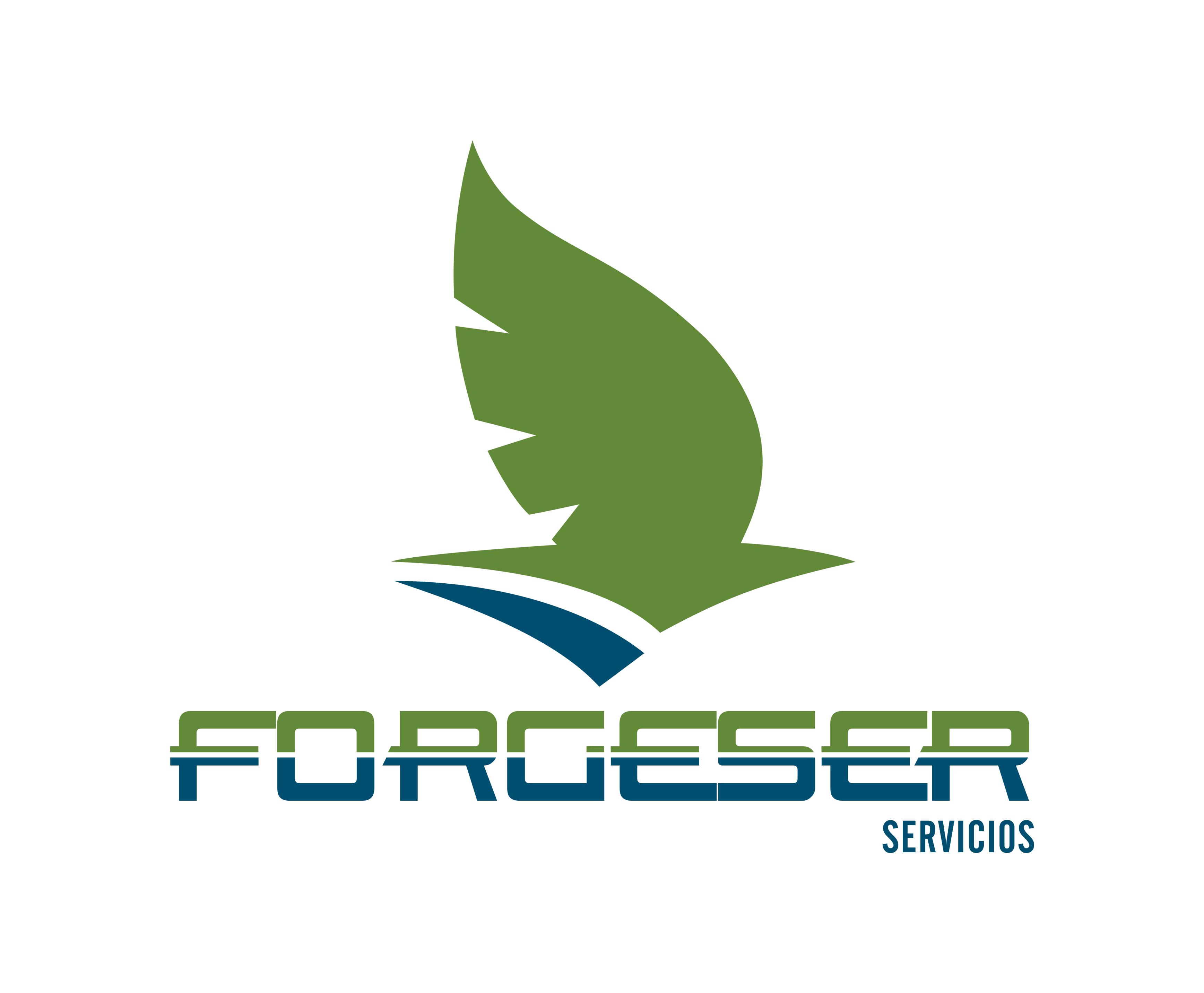 Forgeser servicios