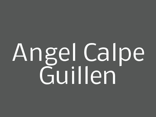 Angel Calpe Guillen