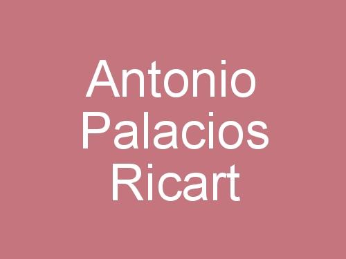 Antonio Palacios Ricart