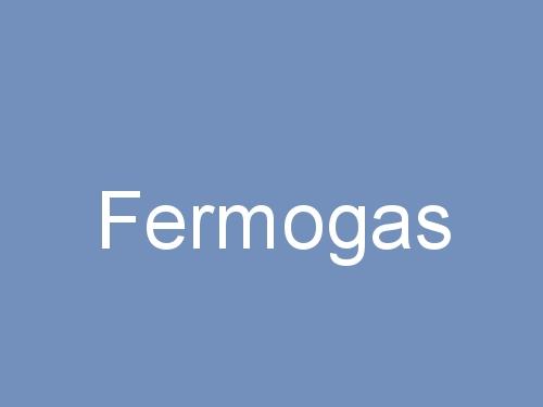 Fermogas