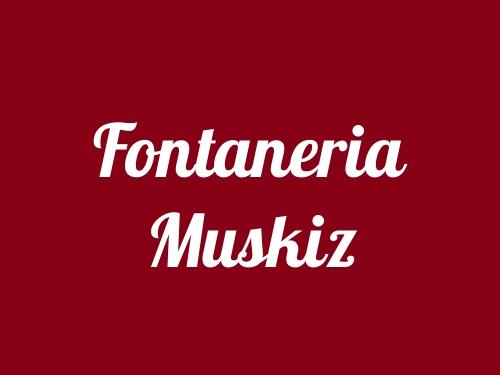 Fontaneria Muskiz