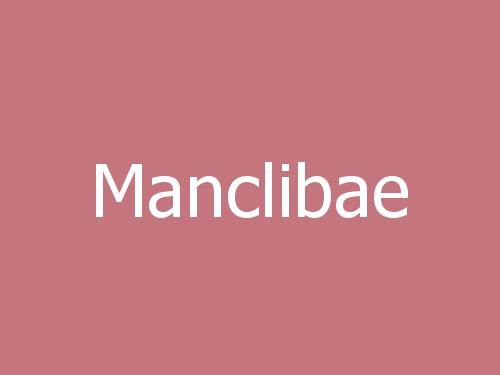 Manclibae