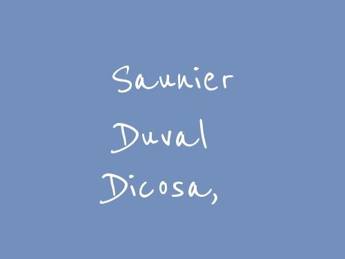 Saunier Duval Dicosa,