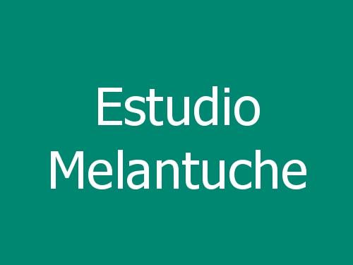 Estudio Melantuche