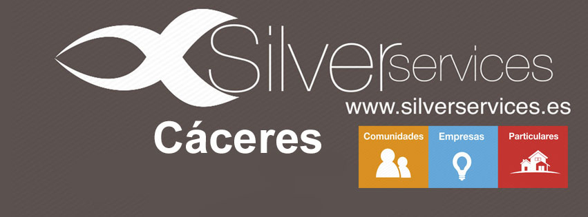 Silver Services