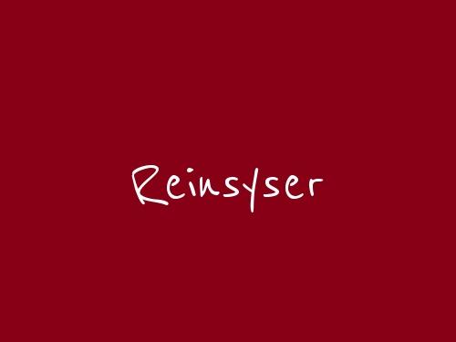 Reinsyser