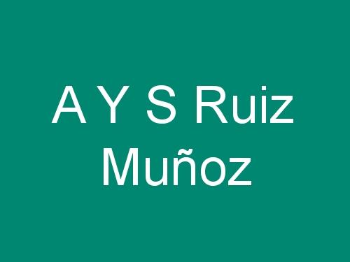 A Y S Ruiz Muñoz