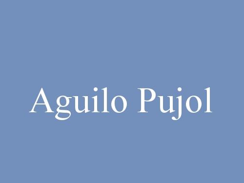 Aguilo Pujol