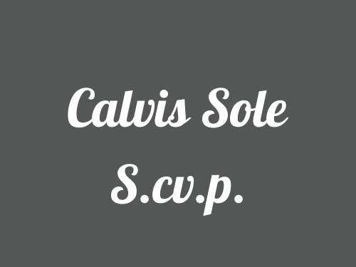 Calvis Sole S.cv.p.