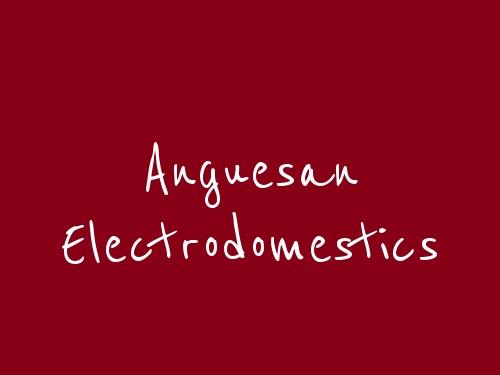 Anguesan Electrodomestics