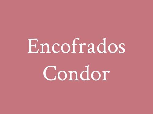 Encofrados Condor