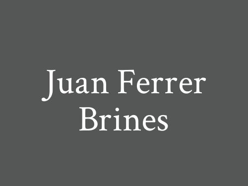 Juan Ferrer Brines