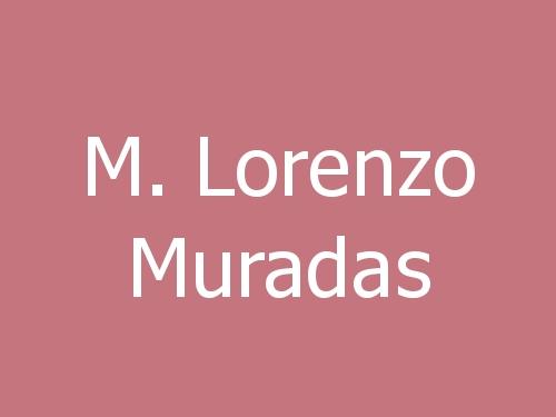 M. Lorenzo Muradas