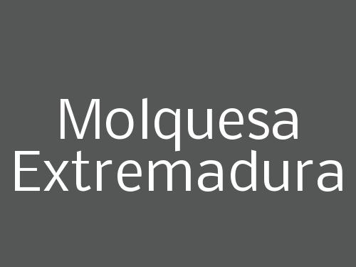 Molquesa Extremadura