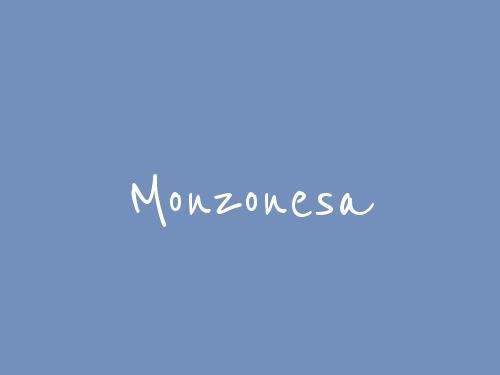 Monzonesa