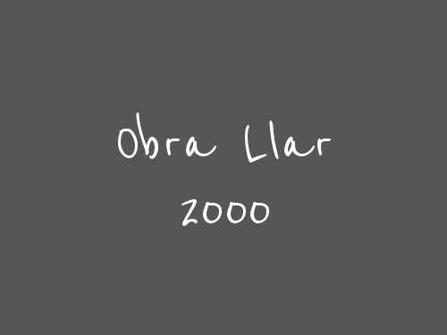 Obra Llar 2000