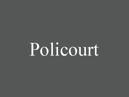 Policourt