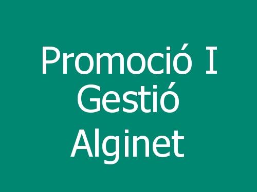 Promoció I Gestió Alginet