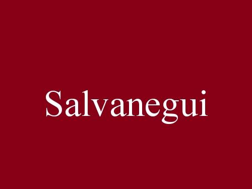 Salvanegui