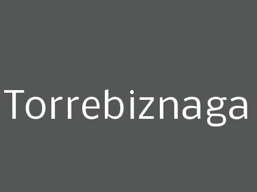 Torrebiznaga