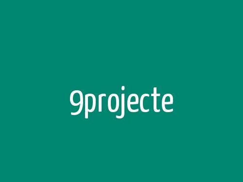 9projecte