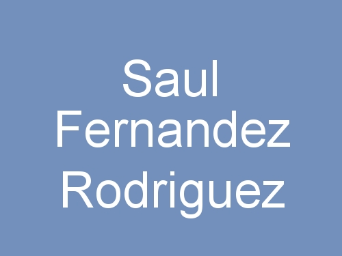 Saul Fernandez Rodriguez