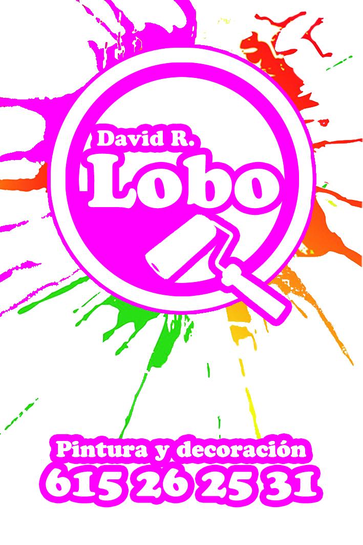 David R.lobo, Pintura Y Decoración