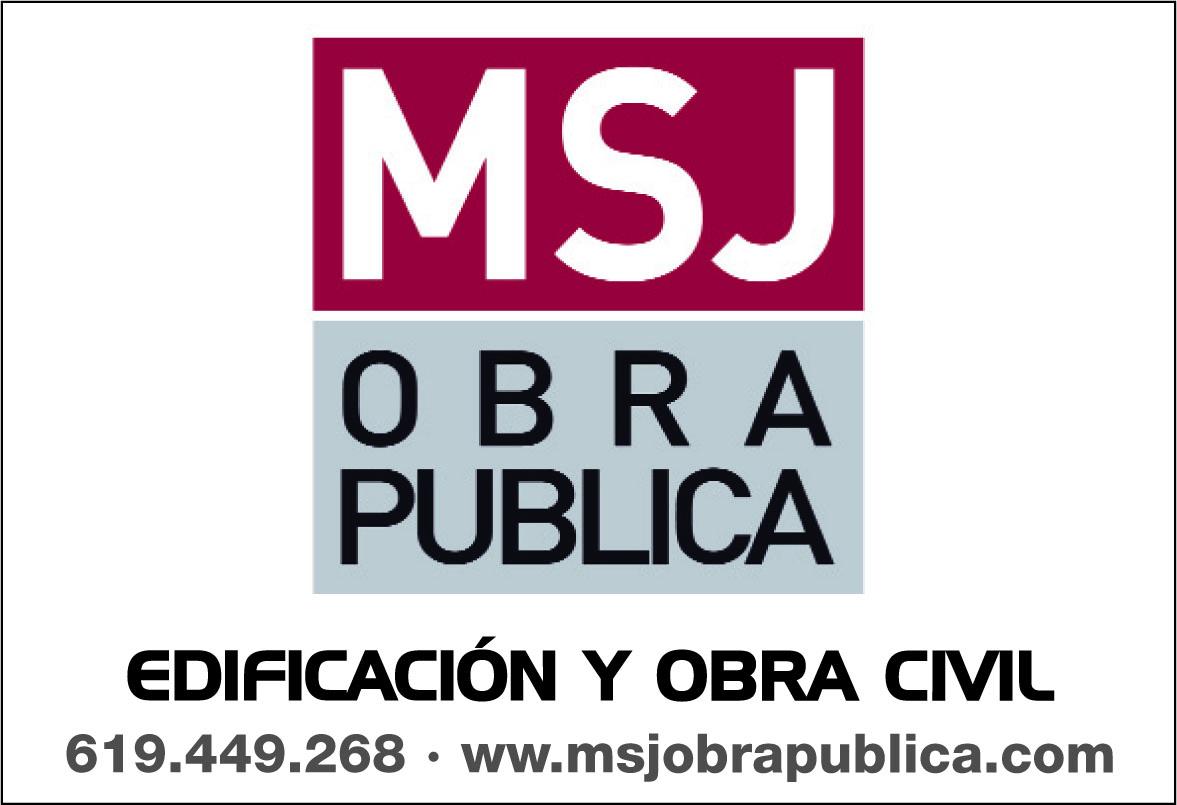 M.s.j. Obra Publica S.l.