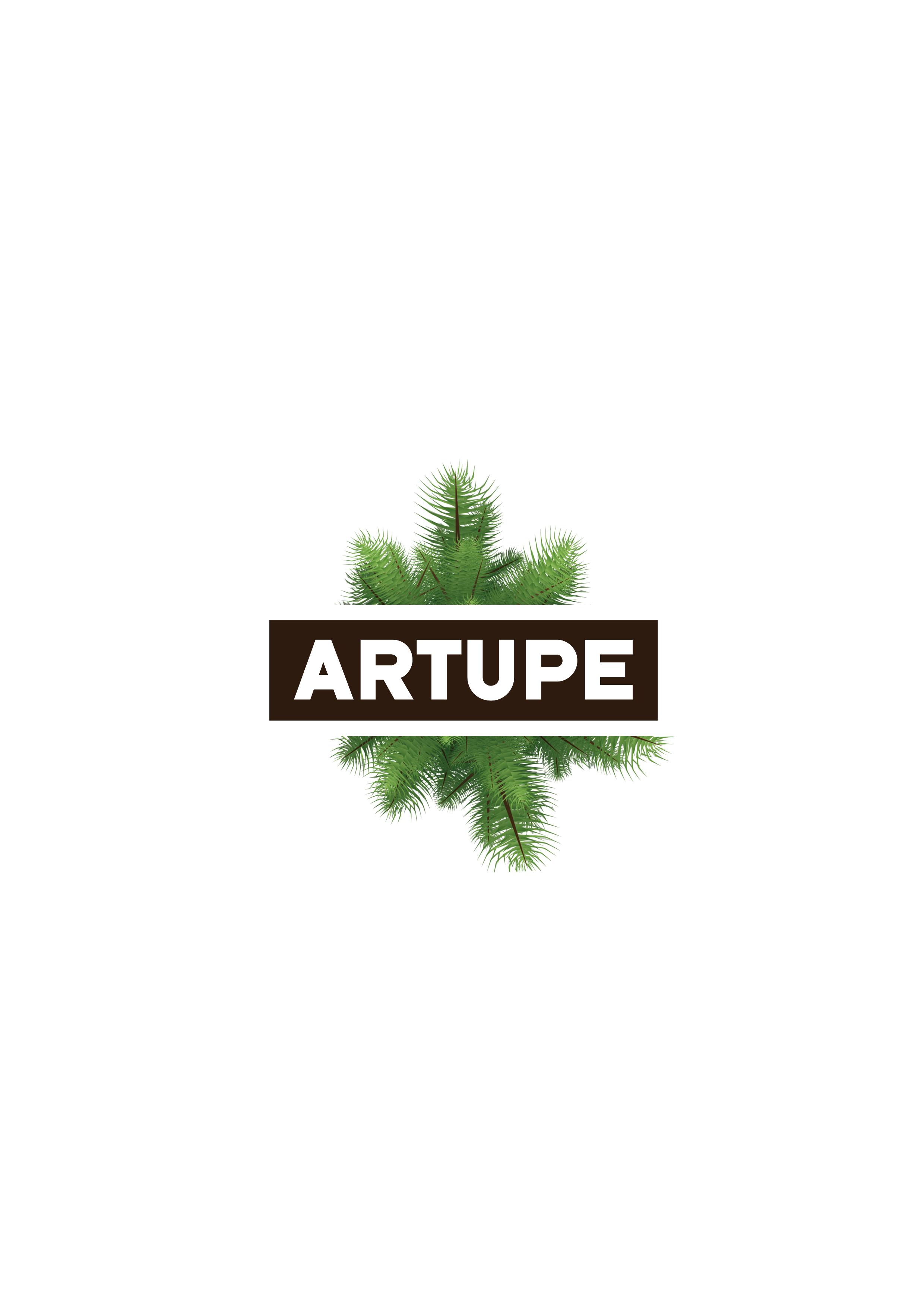 Artupe Construcción En Madera