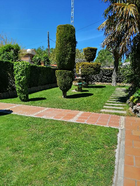 Artedecor Jardinería