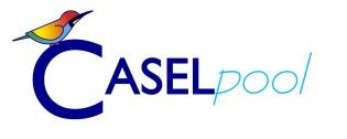 Caselpool