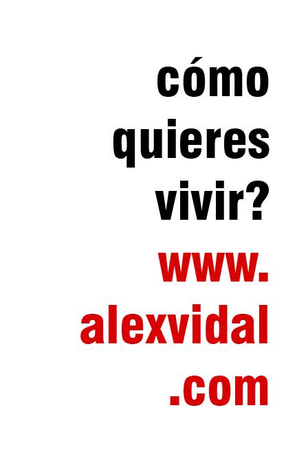 Construcciones Alejandro Vidal