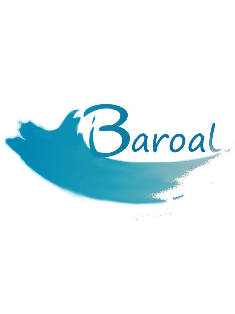 Baroal Gestion Y Calidad